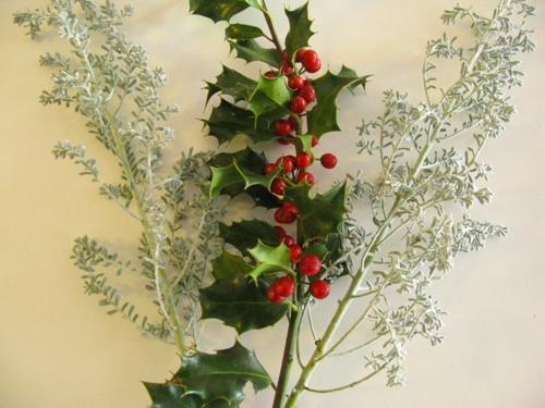 December_flower2