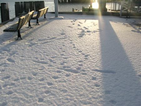 Snowscape8