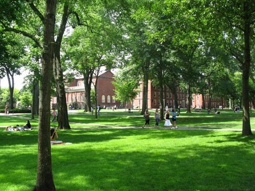 Harvard01